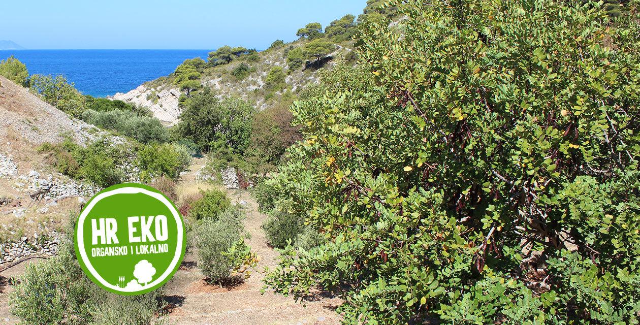 Ekološki uzgoj - budućnost na otoku