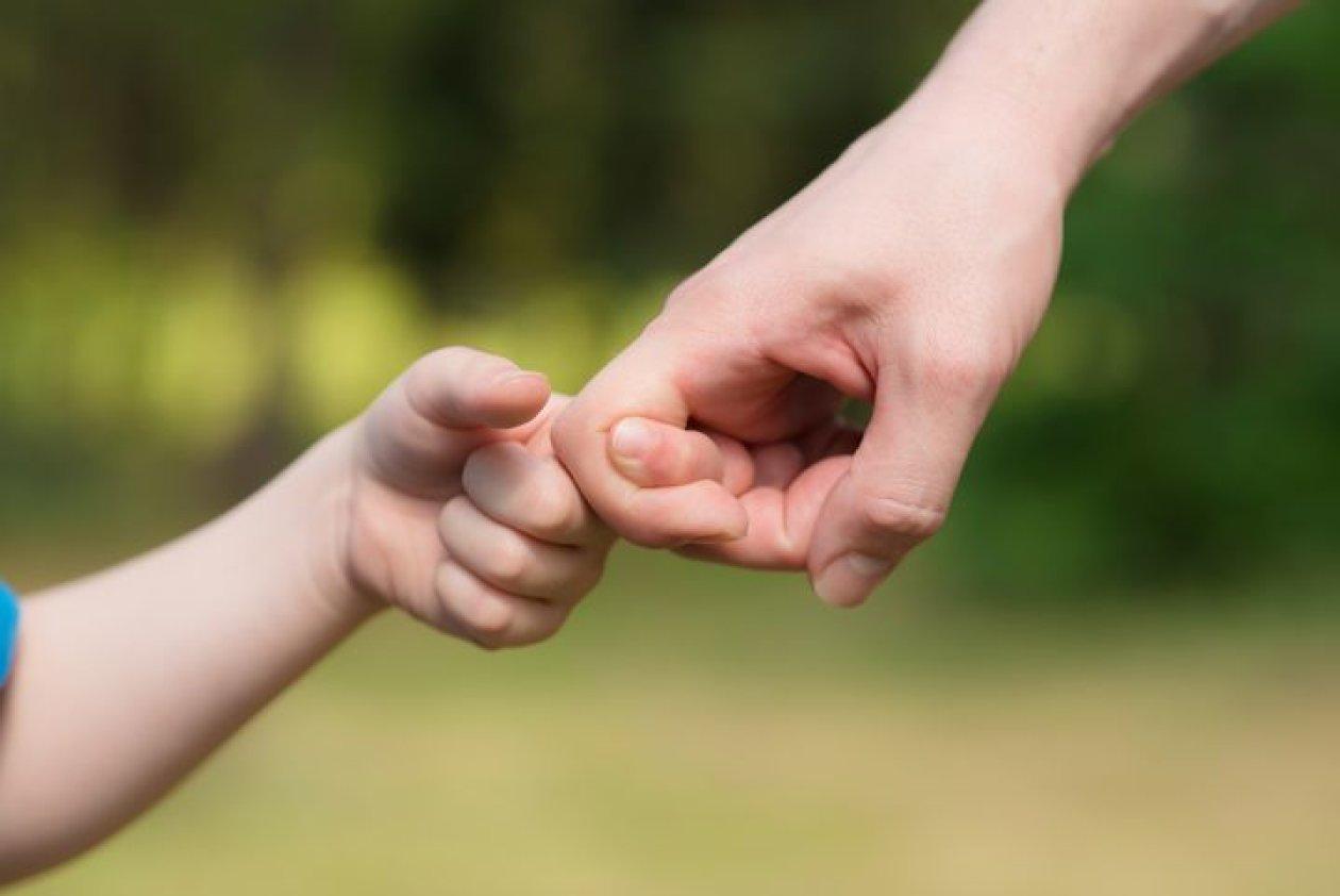 Disciplina bez drame - knjiga za sretniju obitelj