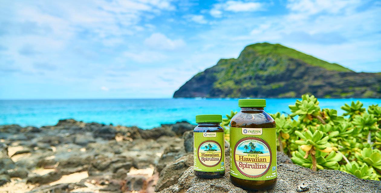 Havajska spirulina – najpopularnija spirulina još od 1984.